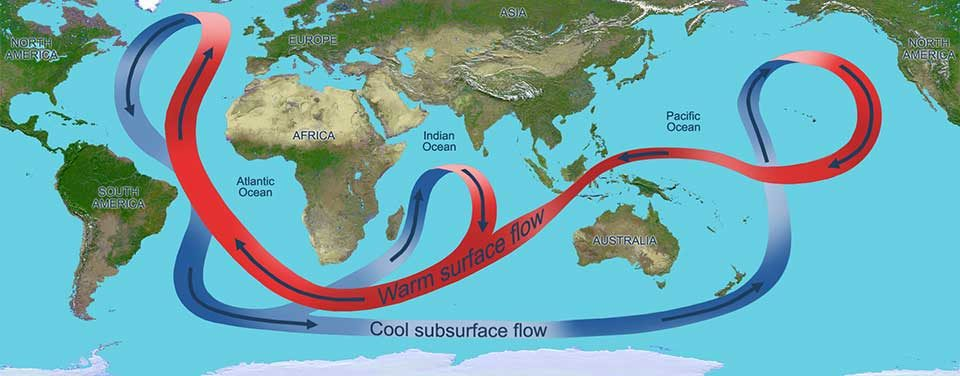 Warm and cool currents looping around oceans and continents